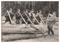 Pictured are several local woodsmen preparing to move a log down the Sackville River